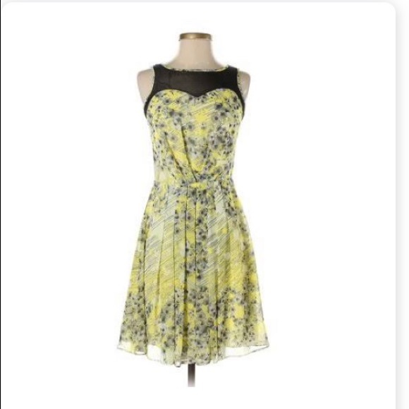 The Limited Dresses & Skirts - The Limited Pleated A-Line Dress